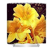 Butter Yellow Lilly Cluster Shower Curtain