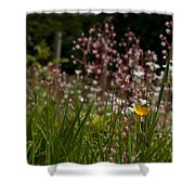 Buttercup And Wildflowers Shower Curtain