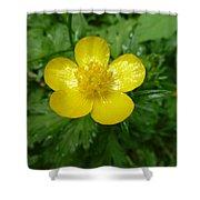 Buttercup Portrait Shower Curtain