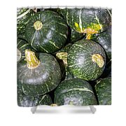 Buttercup Winter Squash On Display Shower Curtain