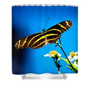 Butterflies And Blue Skies Shower Curtain