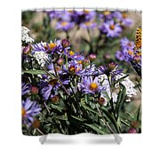 Butterflies And Wildflowers Shower Curtain