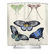 Butterflies I Shower Curtain