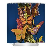 Butterflies On A 2015 Rose Parade Float 15rp047 Shower Curtain