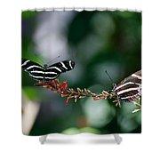 Butterflies On A Wire C Shower Curtain