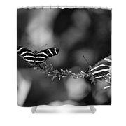 Butterflies On A Wire Shower Curtain