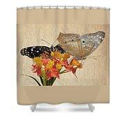 Butterflies Snd Flowers Shower Curtain