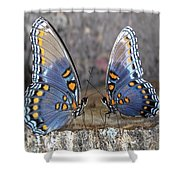 Butterfly 007 Shower Curtain