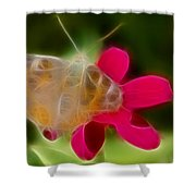 Butterfly-5288-fractal Shower Curtain
