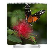 Butterfly 62 Shower Curtain