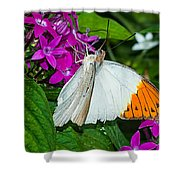 Butterfly 63 Shower Curtain