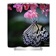 Butterfly And Blossoms Shower Curtain