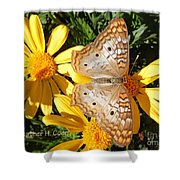 Butterfly And Daisies Shower Curtain