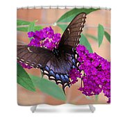 Butterfly And Friend Shower Curtain