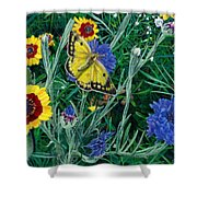 Butterfly And Wildflowers Spring Floral Garden Floral In Green And Yellow - Square Format Image Shower Curtain
