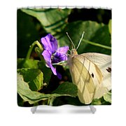 Butterfly At Flower Shower Curtain