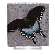 Butterfly At Rest Shower Curtain