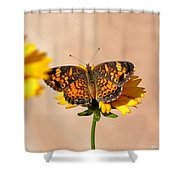 Butterfly Baby Shower Curtain