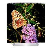 Butterfly Banquet 2 Shower Curtain by Will Borden