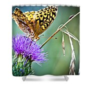 Butterfly Beauty And Little Friend Shower Curtain