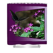 Butterfly Black 16 By 20 Shower Curtain