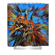 Butterfly Blast Shower Curtain