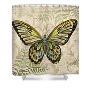 Butterfly Daydreams-a Shower Curtain
