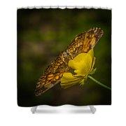 Butterfly Fan Shower Curtain