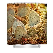 Butterfly Gathering Shower Curtain