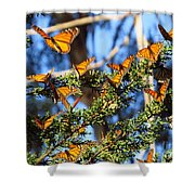 Butterfly Goodbye Shower Curtain