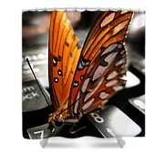 Butterfly Home At 7 Shower Curtain