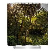 Butterfly House Shower Curtain