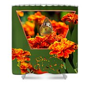 Butterfly In A Sea Of Orange Floral 02 Shower Curtain