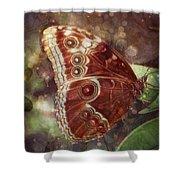 Butterfly In My Garden Shower Curtain