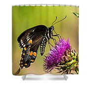 Butterfly In Nature Shower Curtain