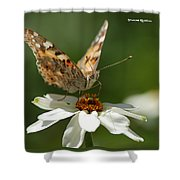 Butterfly Macro Photography Shower Curtain