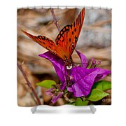 Butterfly On Bouganvilla Shower Curtain