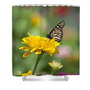 Butterfly On Carnation Shower Curtain