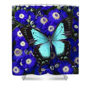 Butterfly On Cineraria Shower Curtain