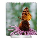 Butterfly On Cornflower Shower Curtain