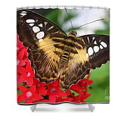 Butterfly On Red Flower Shower Curtain
