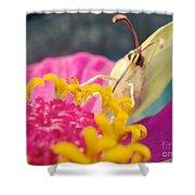 Butterfly On Zinnia Shower Curtain