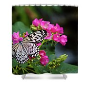 Butterfly Pollinating Flower Shower Curtain