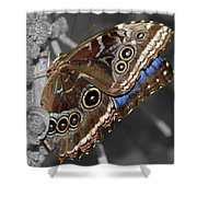 Butterfly Spot Color 1 Shower Curtain
