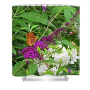 Butterfly Surprise Shower Curtain