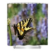 Butterfly Thoughts Shower Curtain