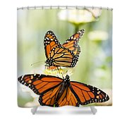 Butterfly Trio Shower Curtain