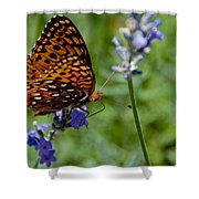 Butterfly Visit Shower Curtain
