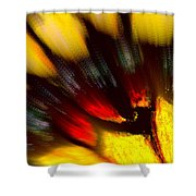 Butterfly Wing Pastel Shower Curtain
