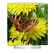 Butterfly Yellow Shower Curtain